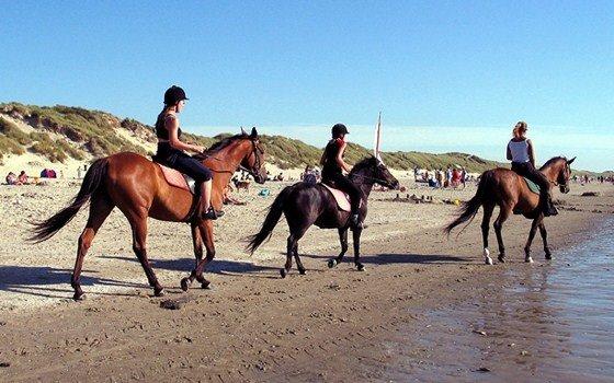 Recreatie Ameland - Paardrijden strand