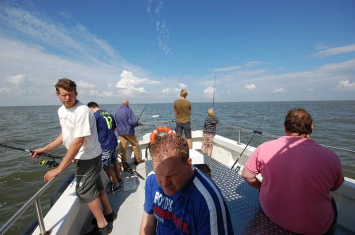 Recreatie Ameland - Zeevissen Waddenzee